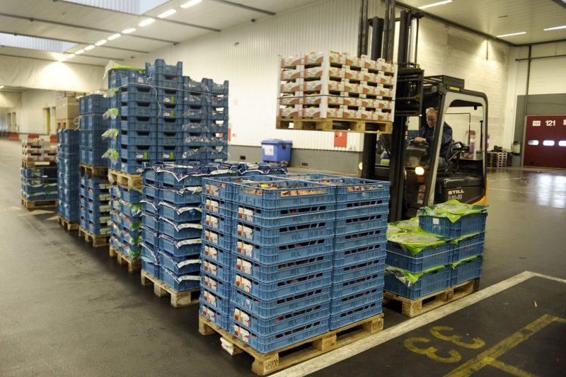 Cómo prevenir plagas en el transporte de vegetales