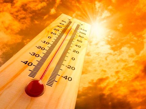 Consejos para librarse del calor de forma ecológica