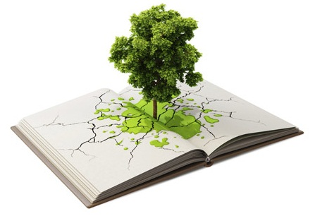 Siete consejos para mejorar el medio ambiente en los colegios
