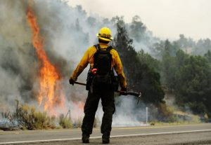 bombero-incendioforestal-getty