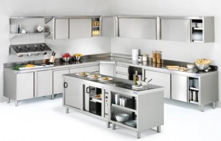 Control de plagas en la cocina durante el verano