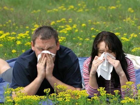 alergia-primaveral-we-prin