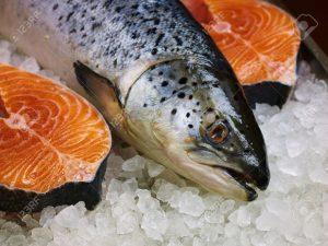 13815179-El-pescado-fresco-de-color-rojo-sobre-el-hielo-Foto-de-archivo