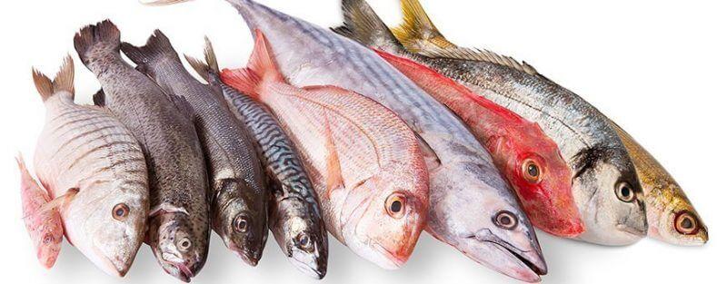 Nuevo tratamiento para destruir el Anisakis en el pescado
