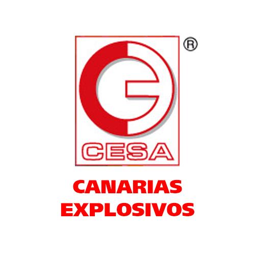 Canarias Explosivos