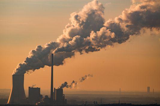 ¿Qué relación hay entre el aumento de emisiones de CO2 y las plagas de insectos?