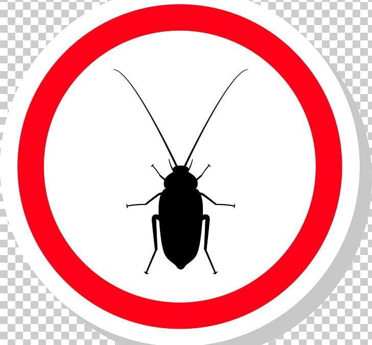 Lo que necesitas saber sobre una plaga de artrópodos